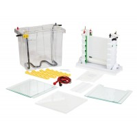 Enduro VE20 Vertical Gel Electrophoresis System